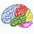 Brain Workshop 4.8.4 Logo Download bei soft-ware.net