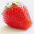 Strawberry Perl für Windows Logo Download bei soft-ware.net