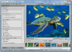 ACDSee Foto-Manager 12