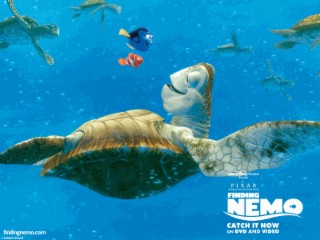 Findet Nemo Screenshot