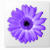 Artweaver Logo Download bei soft-ware.net